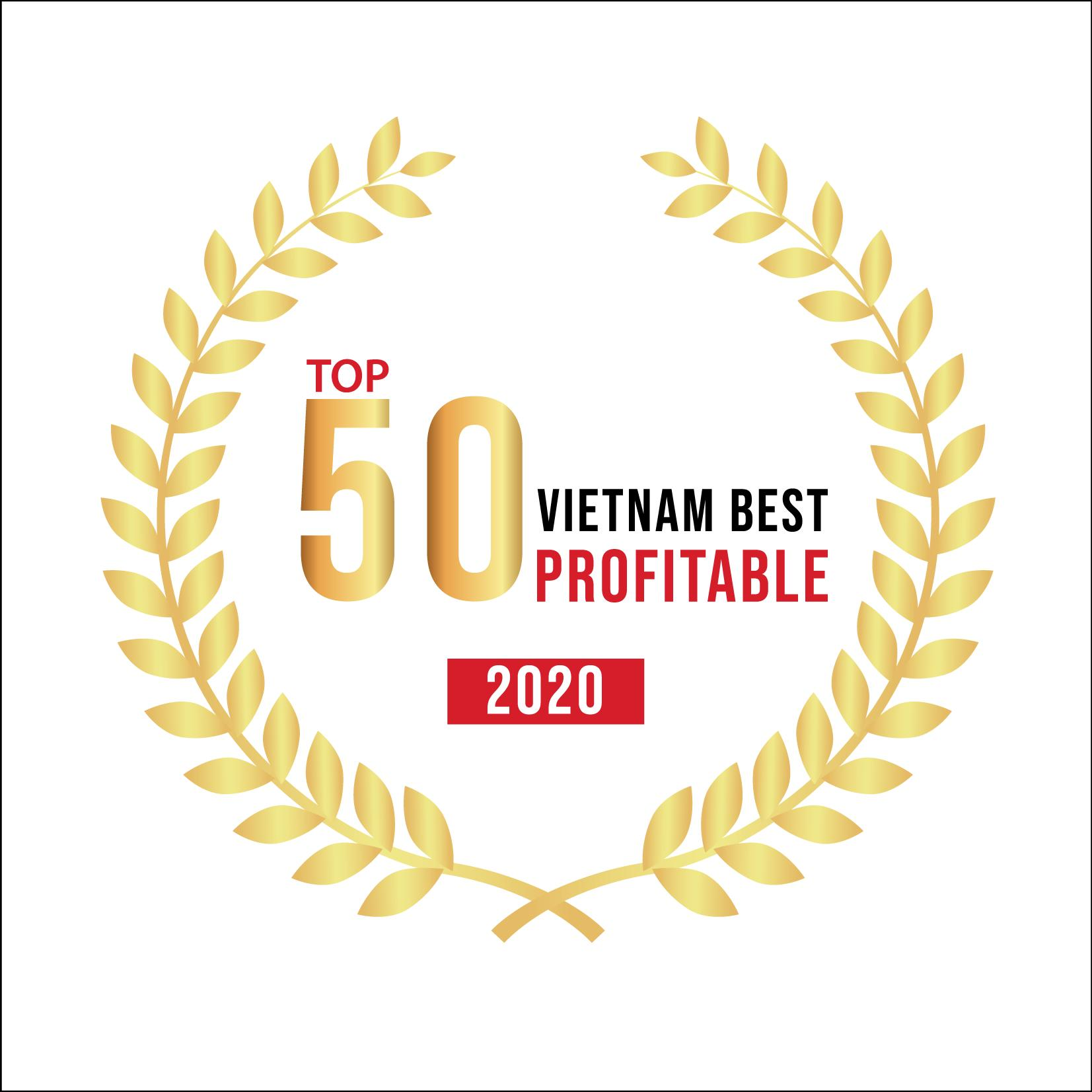 Top 50 Vietnam Best Profitable 2020