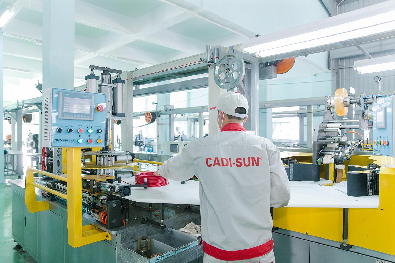 6 tháng đầu năm 2021, CADI-SUN đạt doanh thu cao hơn so với cùng kỳ