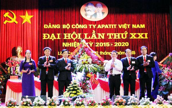 Công ty CP XNK Quảng Bình đón nhận quyết định thành lập chi bộ Đảng