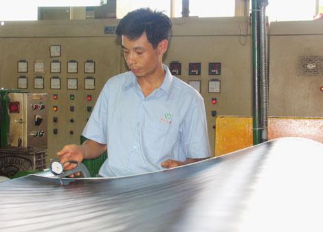 Công ty Cổ phần Công nghiệp Nhựa Phú Lâm: Chuyên nghiệp trong hoạt động