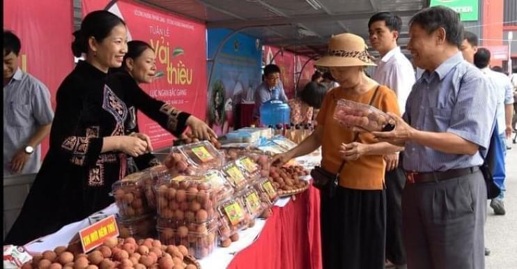 Big C Việt Nam đồng hành cùng tuần lễ vải thiều Lục Ngạn