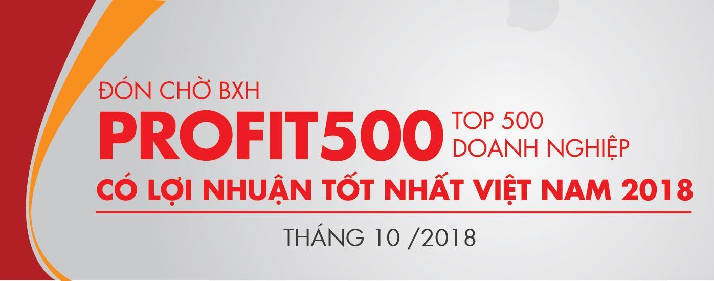 Gửi thông tin kiểm chứng BXH Profit500 2018