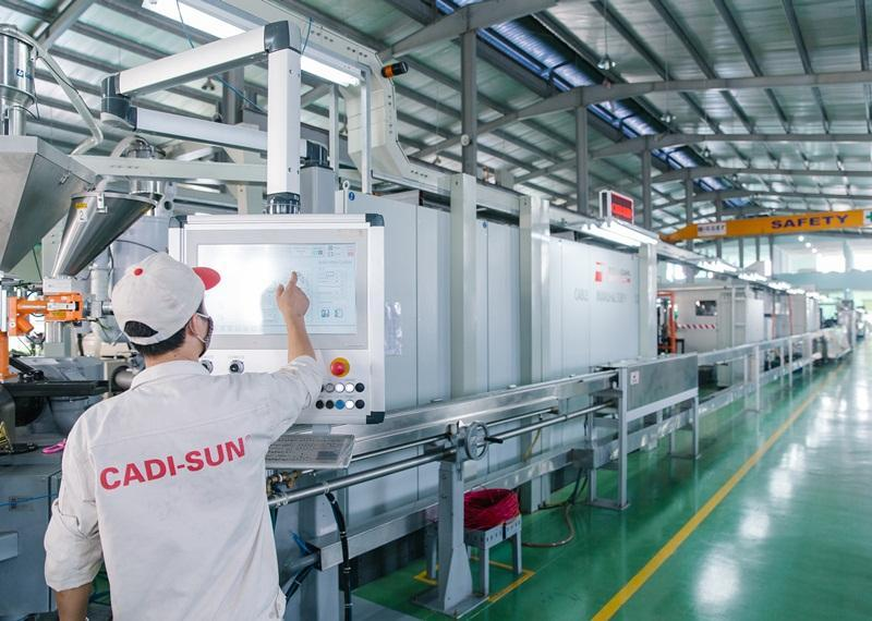 CADI-SUN chủ động trong hội nhập quốc tế