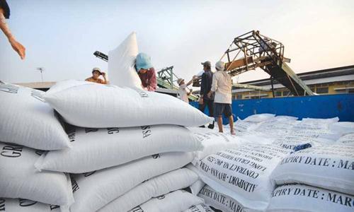 Doanh nghiệp xuất khẩu gạo đòi sớm được 'cởi trói'